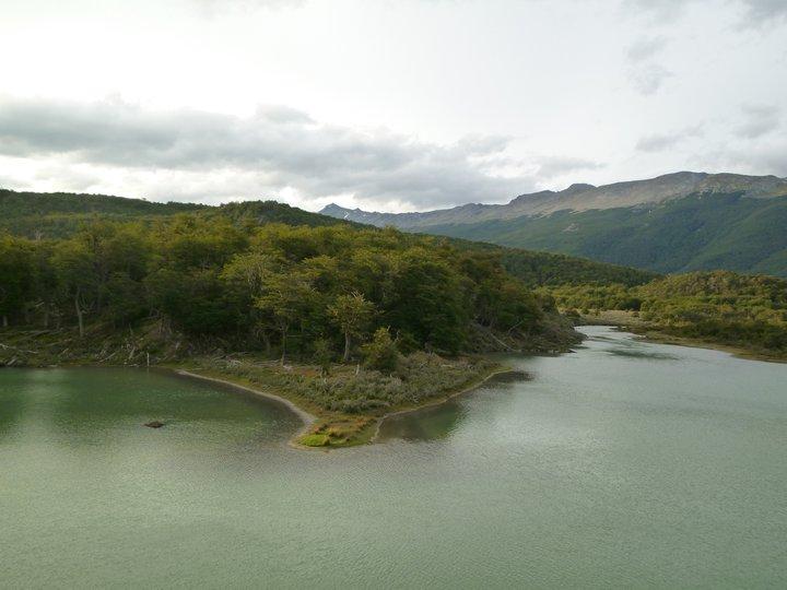 Lago e alberi