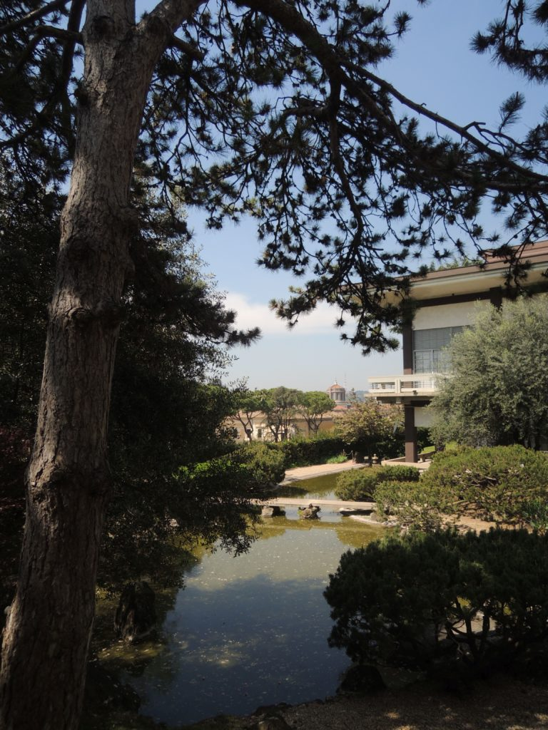Uno sguardo al giardino giapponese