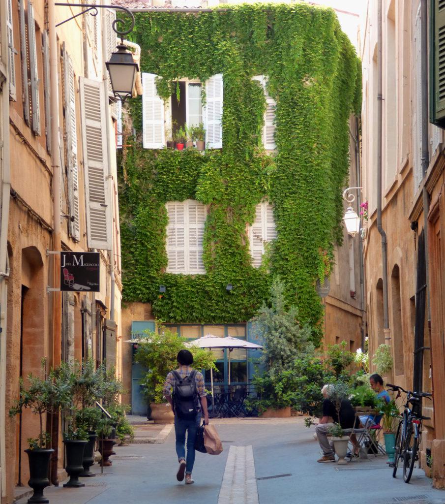 L'edera s'abbarbica sui palazzi di Aix