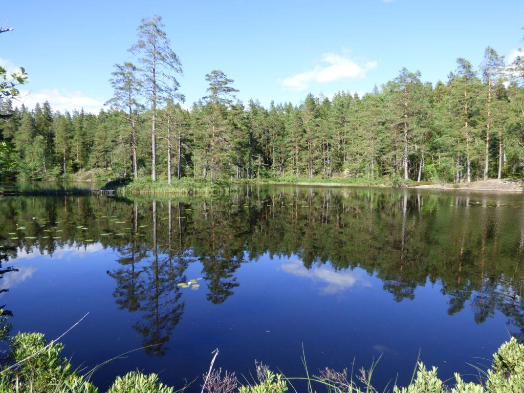 Lago Fagertärn