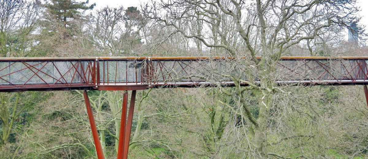 Treetop walkway kew garden Palm House giardino botanico londra