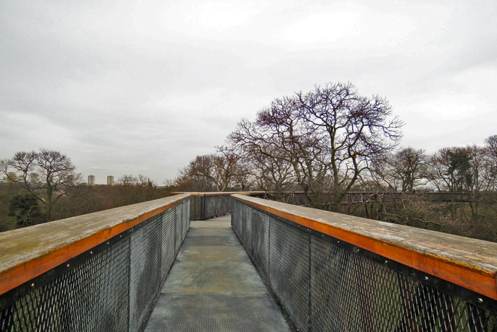 Treetop Walkway di Kew