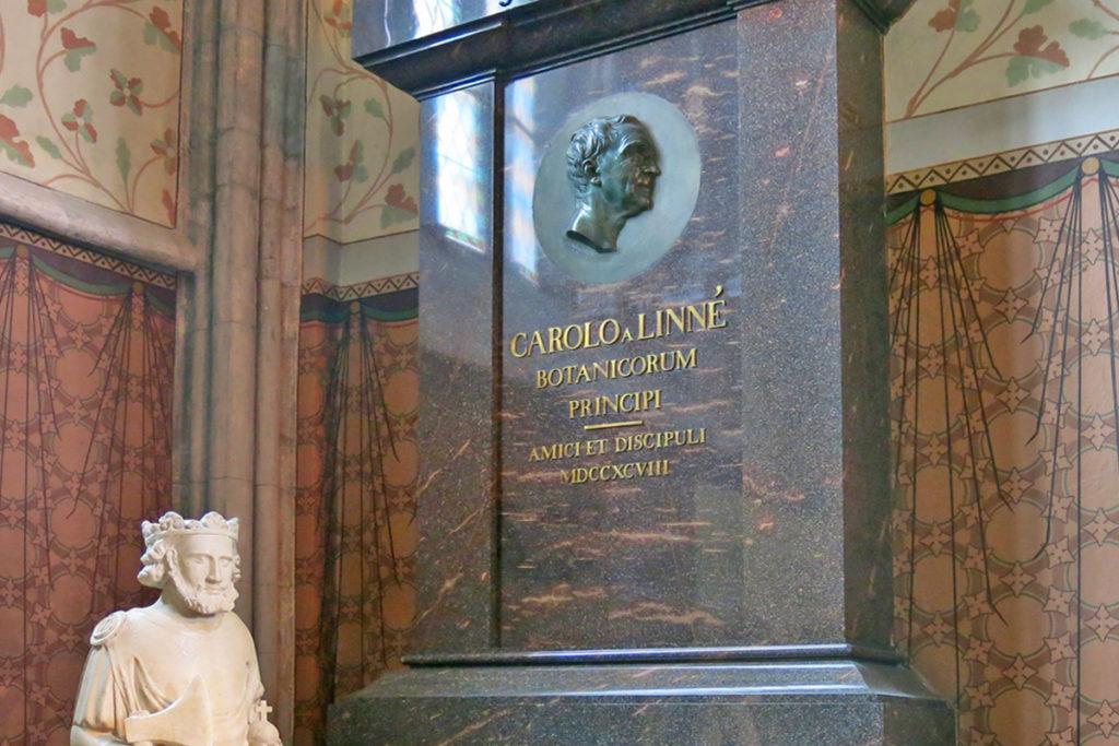 La tomba di Linneo ad Uppsala