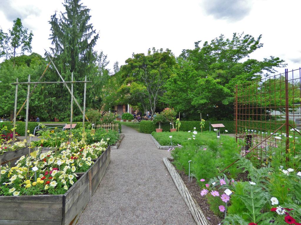 Il giardino di Linneo