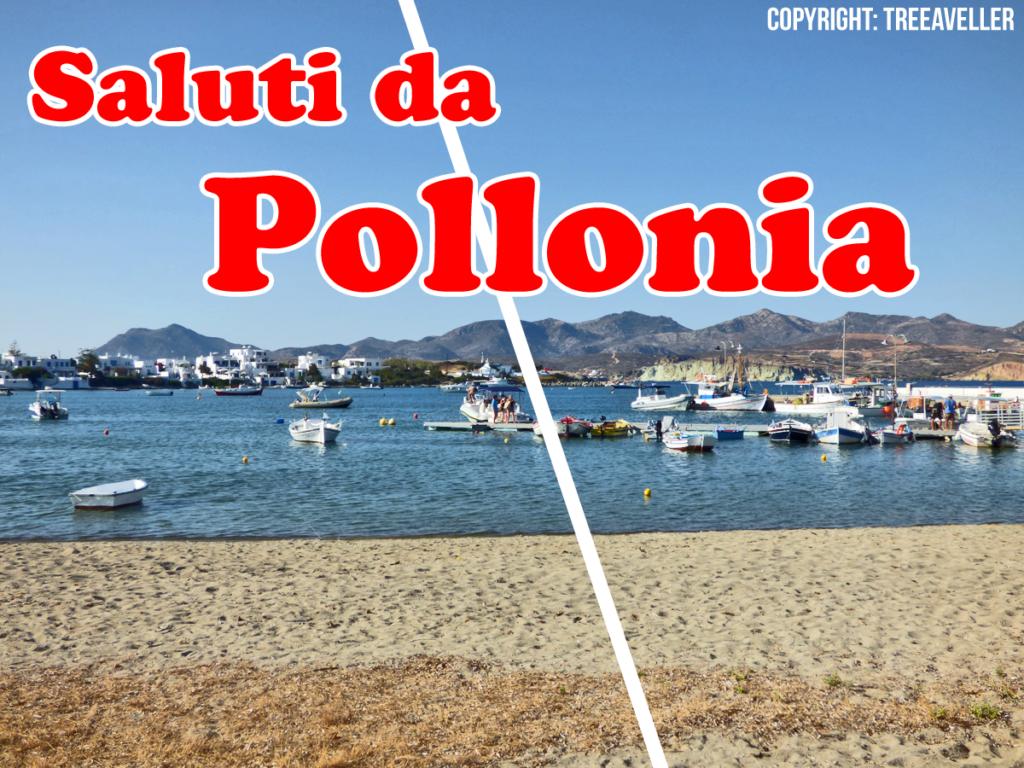 Pollonia