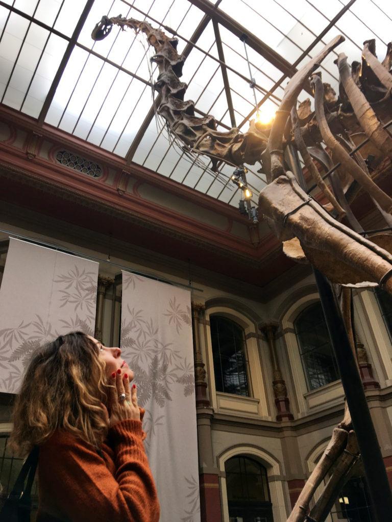 musei insoliti a berlino Storia Naturale