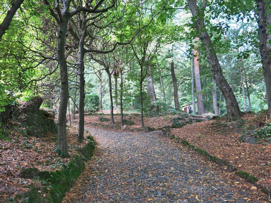 Parco Mirabello Varese