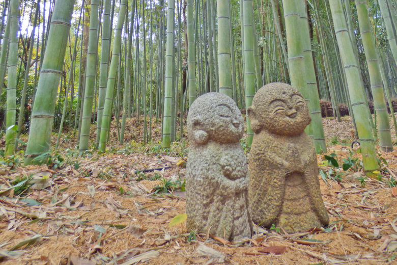 Arashiyama_bambu_cover