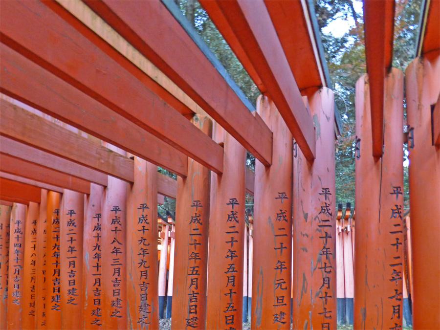 torii a Fushimi Inari