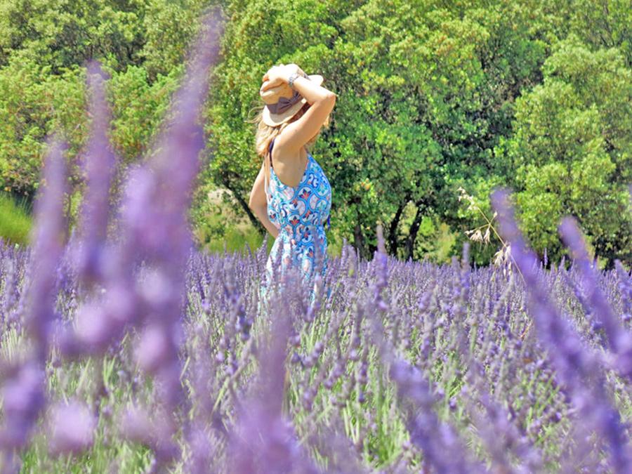 campi di fiori