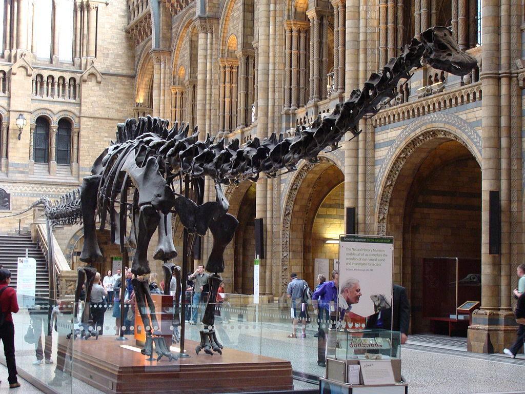 1024px-Diplodocus_(replica).001_-_London